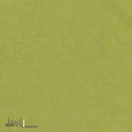 GELATO 12 kiwi